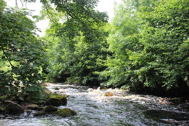 river greta