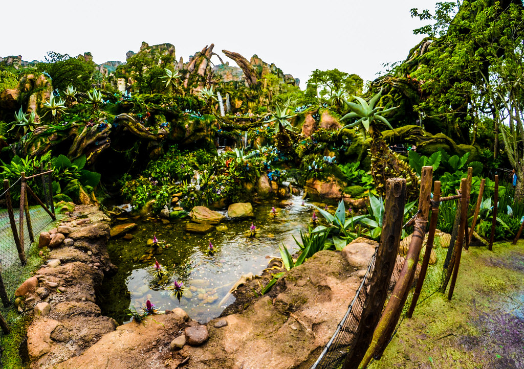 Pandora pond front AK