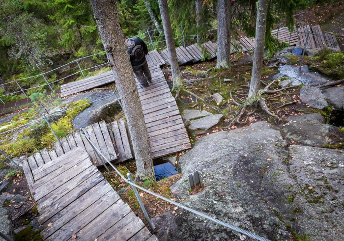 Askolan hiidenkirnut portaat hiidenkirnuille puuportaat (1 of 1)
