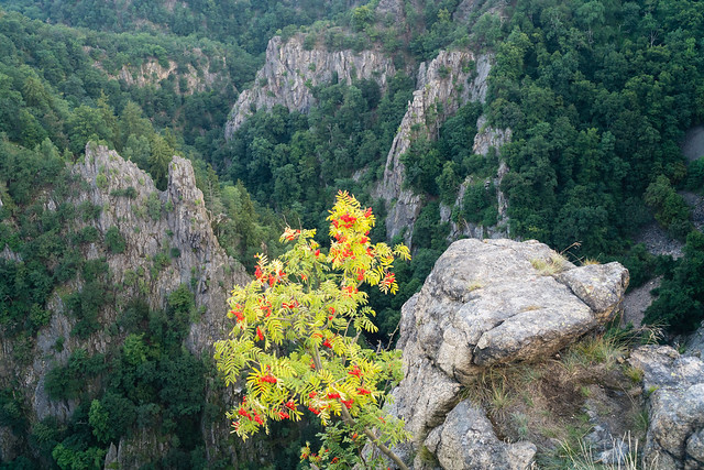 Grand Canyon of the Harz