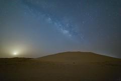 Night Out Qatar