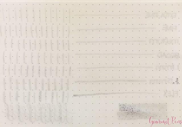 Ink Shot Review Jacques Herbin 1798 Améthyste de l'Oural 17