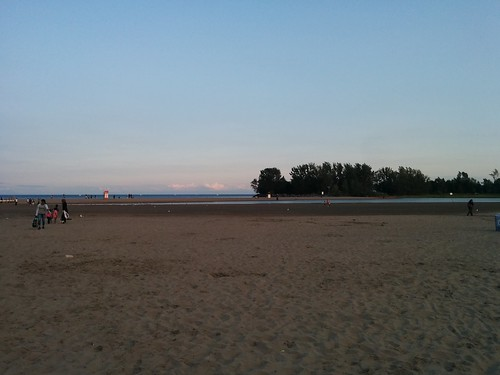 Looking back #toronto #woodbinebeach #beaches #lakeontario #flooding #evening #latergram