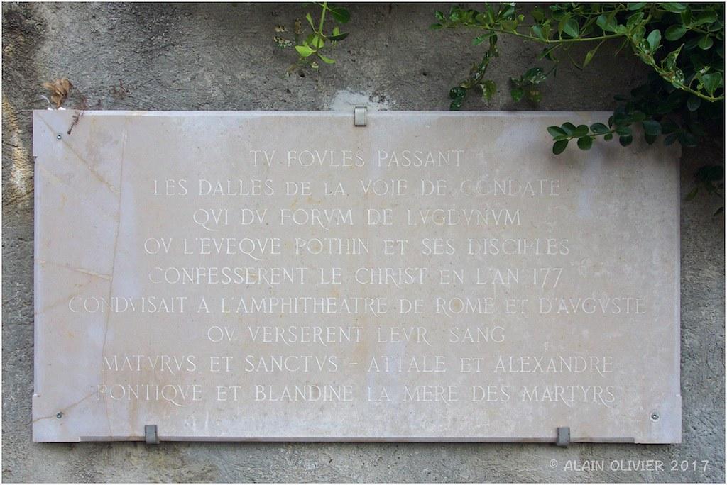Entre Parc de la Tête d'Or et Vieux Lyon 36818801926_82aa871a51_b