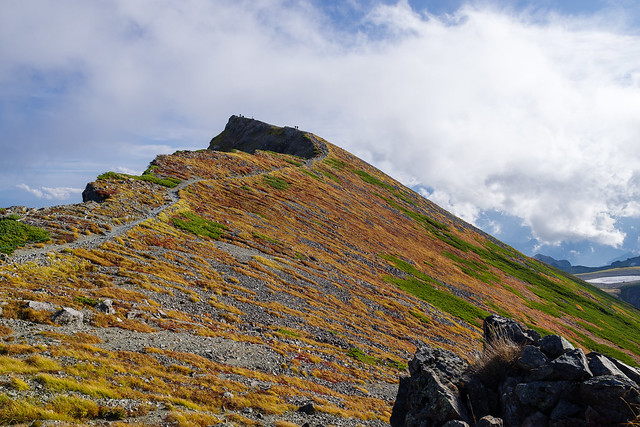 白馬岳山頂への稜線と草紅葉