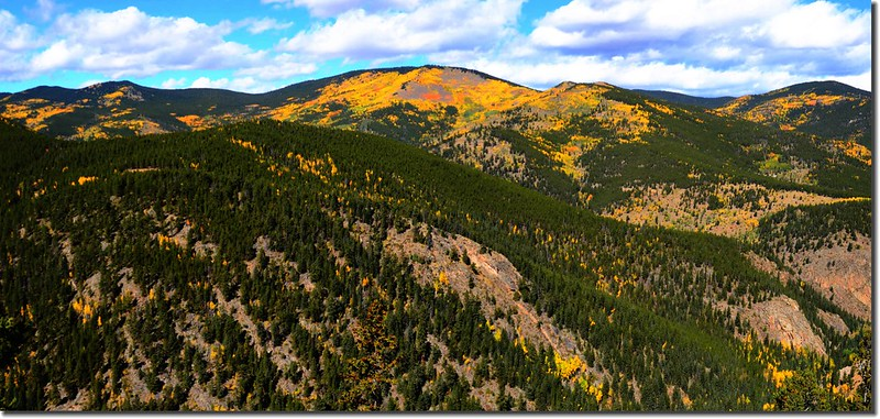 Fall colors, Mount Evans Scenic Byway, Colorado (4)