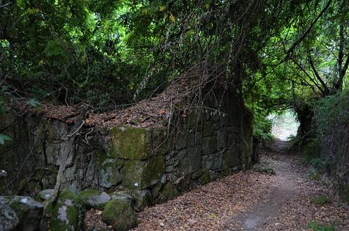 Caminho do Prado III