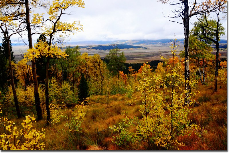 The view of the South Park valley area from Colorado Trail (7)