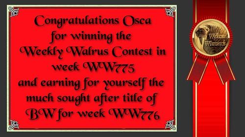 WW775_Winner Certificate