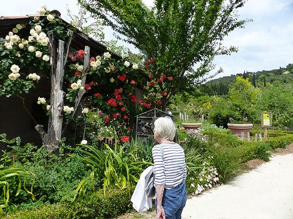 lala dans les jardins du MIP