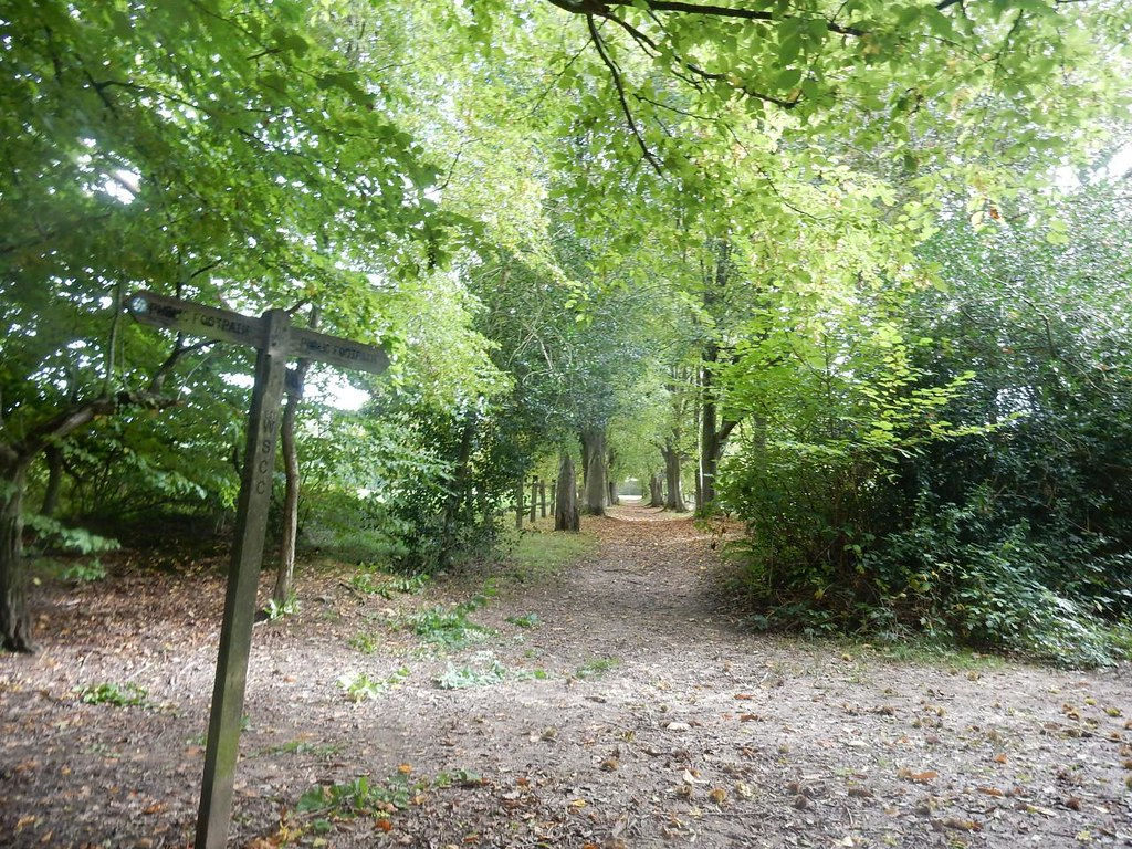 Avenue Haywards Heath Circular