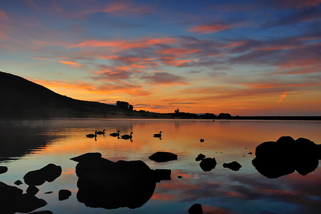 A tranquil dawn