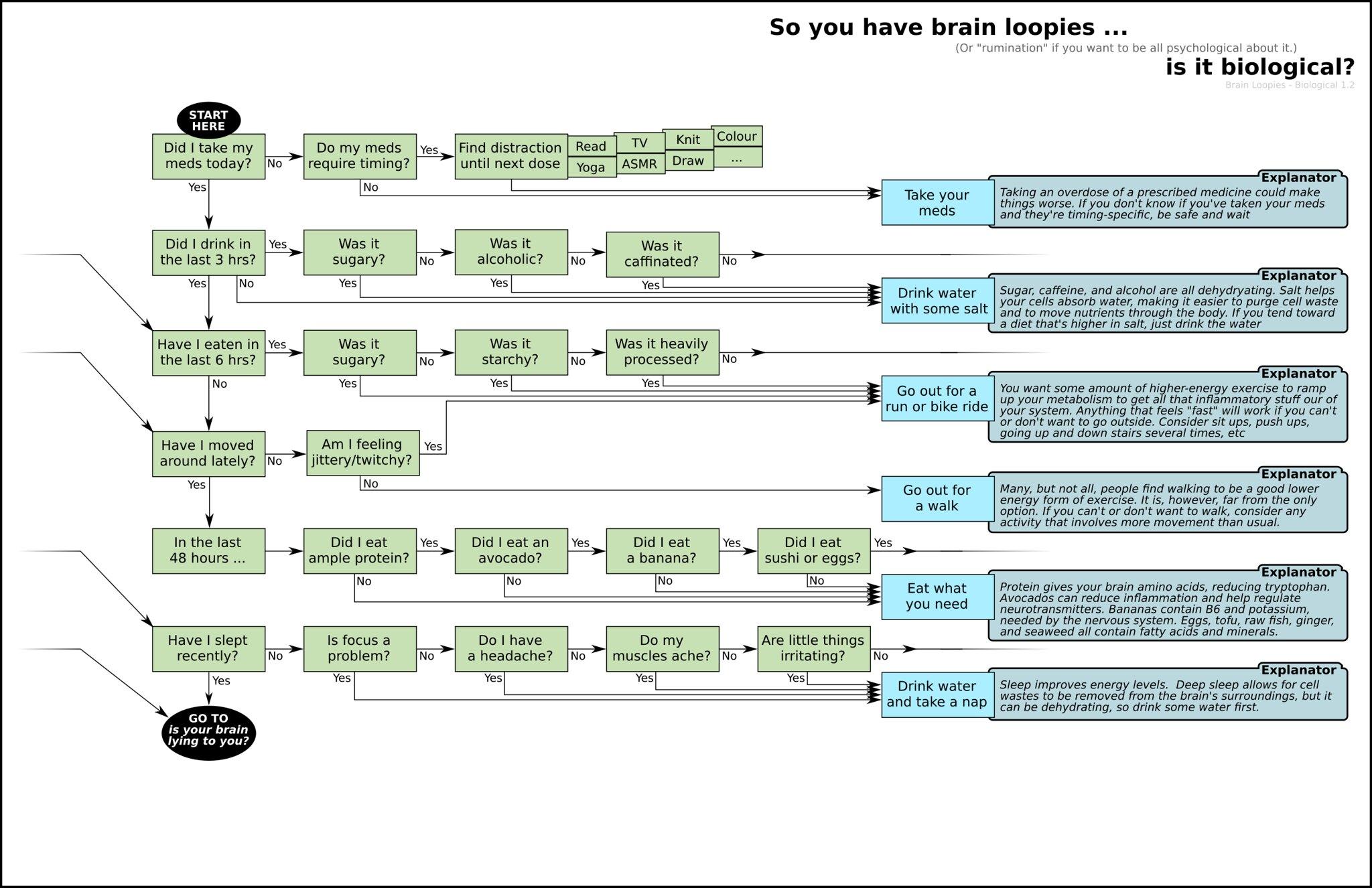 Brain Loopies - Biological