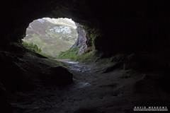 The Bone Caves