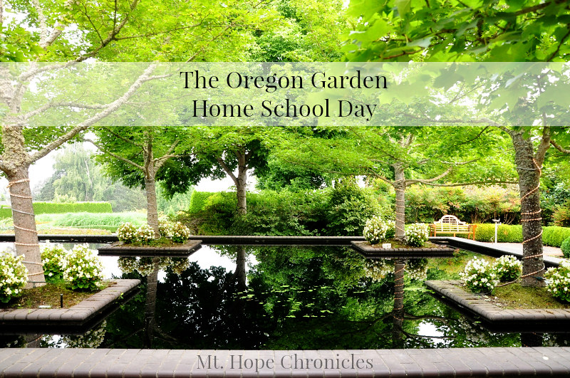 Oregon Garden @ Mt. Hope Chronicles