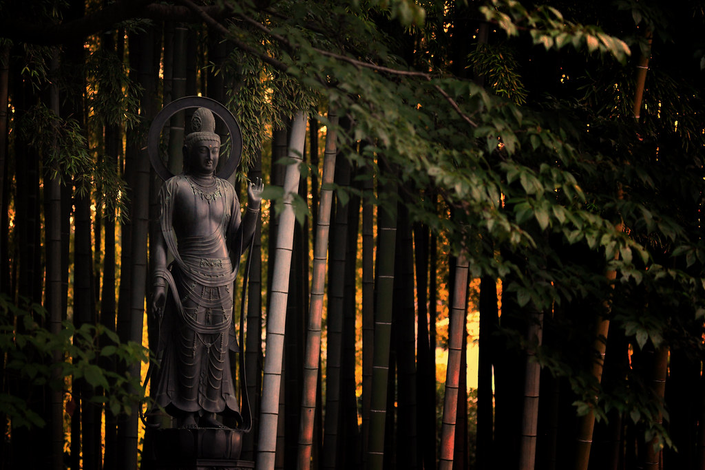 Compassionate Kannon In Summer