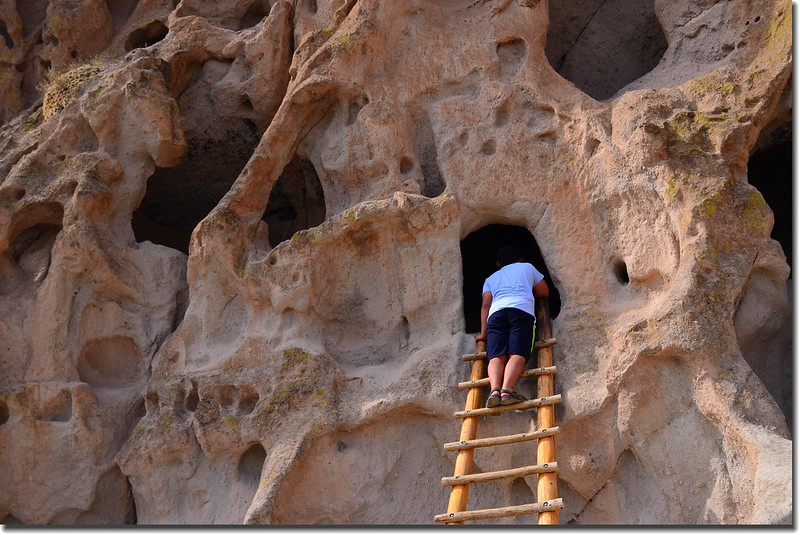 A wooden ladder leading to a cave dwelling at the Bandelier National Monument (2)