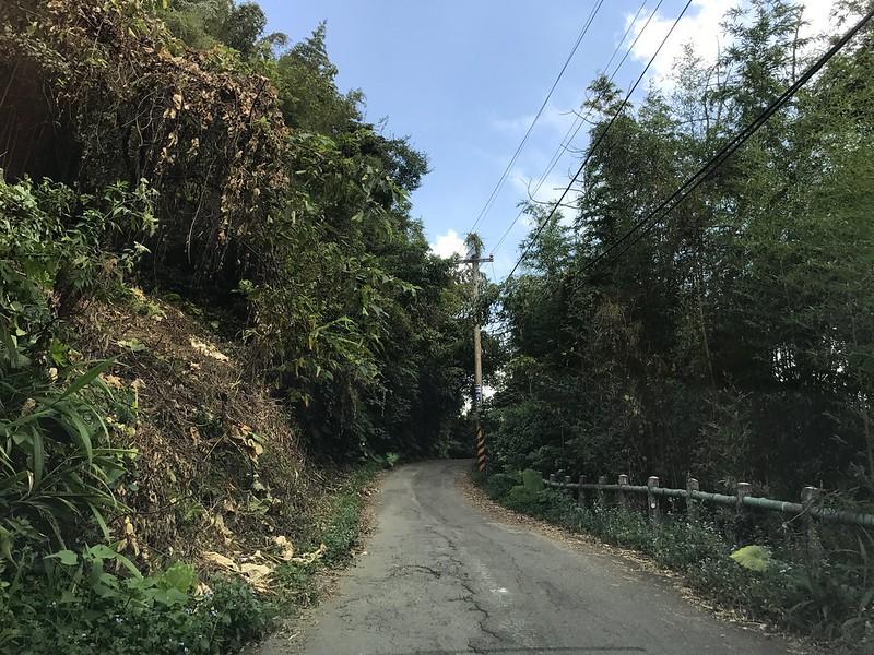 沿途的道路