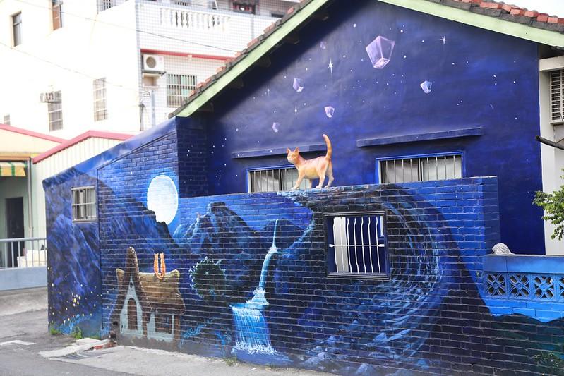 屋頂上的貓
