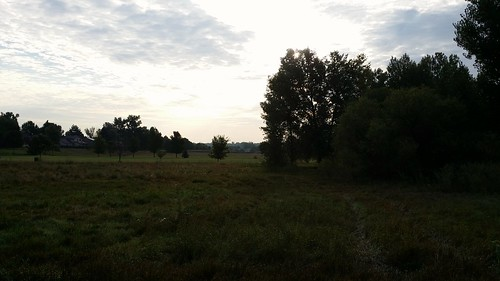 #tommw 56F mostly cloudy. Calm