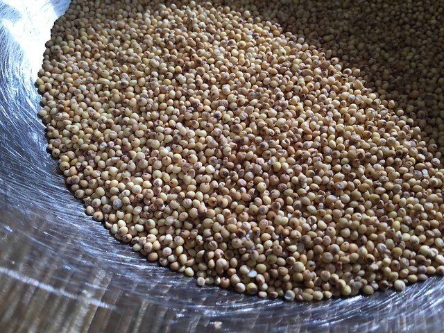 Toasted millet