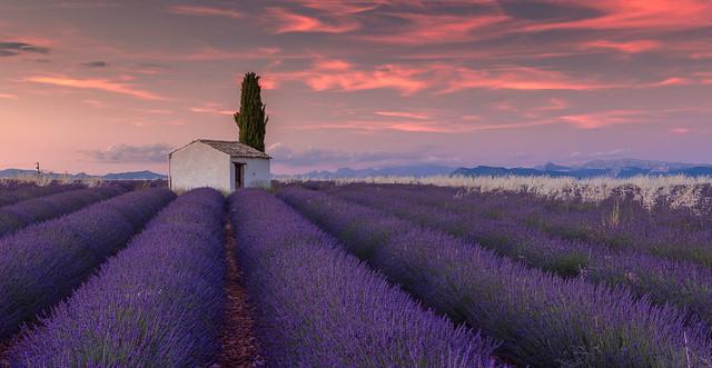 La Lumière du Soir Provençal - (numéro deux)