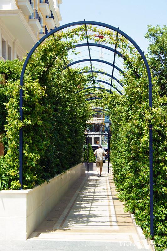Арочный проход, оплетенный растениями