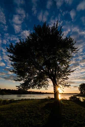 tree sky cloudsstormssunsetssunrises clouds nebraska evening sunset lake holmeslake sony sonya6500