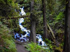 Multnomah-Falls-Columbia-Gorge-DSCN3312