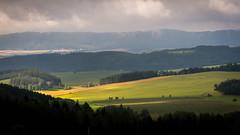 Běh Javořími Horami