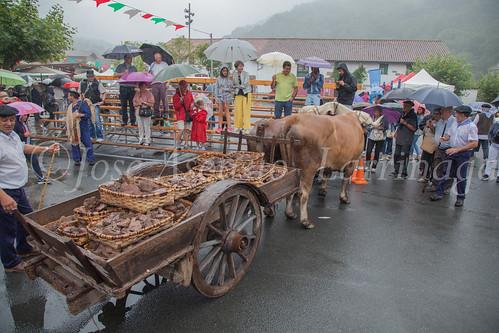 Feria del Hierro- Urdax 2017 #DePaseoConLarri #Flickr -82
