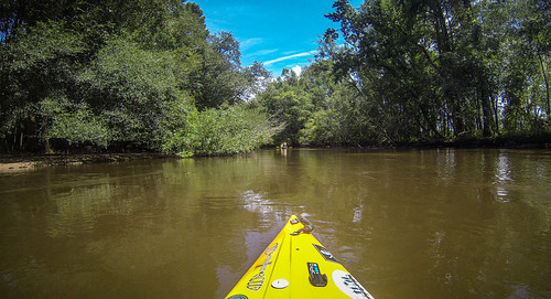 Lynches River with Lowcountry Unfiltered-43