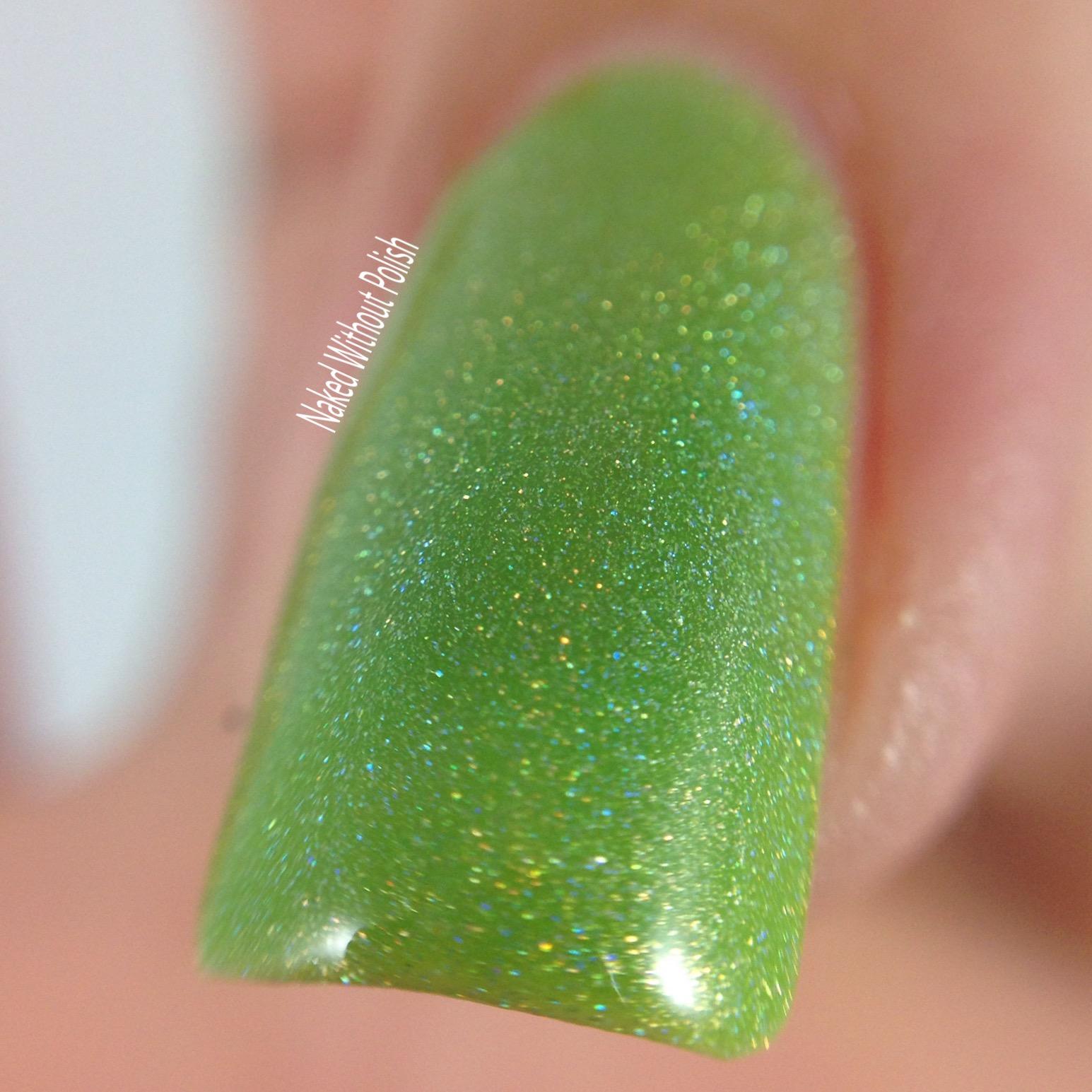 LynBDesigns-Lime-and-Lime-Again-5