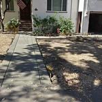New Front Walkway In Davis