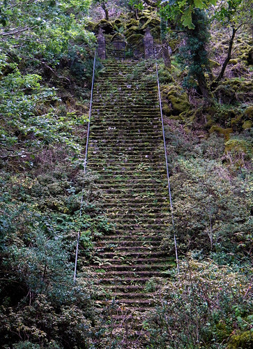 Overgrown stairs lead up to a gate at Glenveagh National Park in Ireland