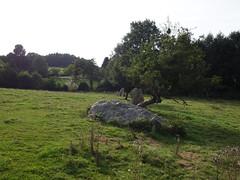 L'alignement de menhirs de la Bouaderie près de Gosné - Ille-et-Vilaine - Septembre 2017 - 02 - Photo of Liffré