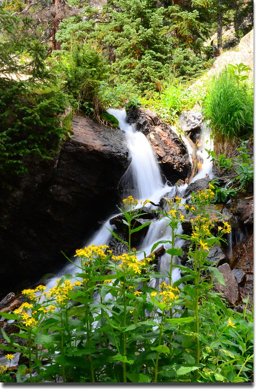 Cascade along the trail (4)