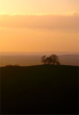 a View of beacon Hill from Combe Hill at sunset