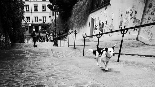 On a Mission, Montmartre, Paris