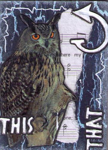 Hoot Owl 5of8