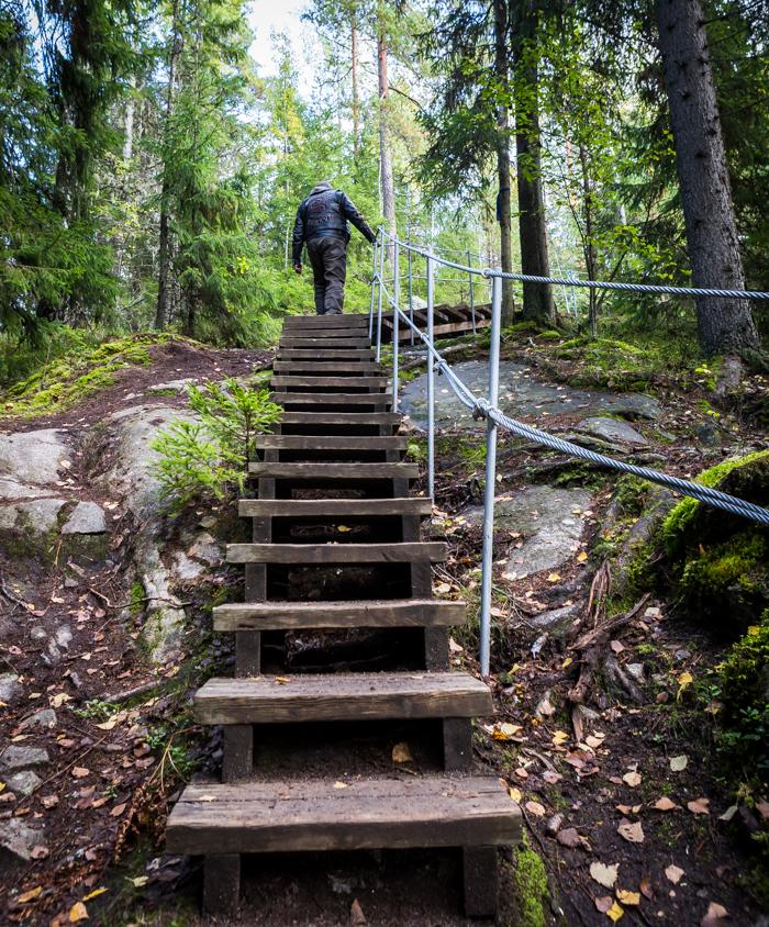 Askolan hiidenkirnut portaat hiidenkirnuille liikuntaesteiset liikuntarajoitteiset  (1 of 1)