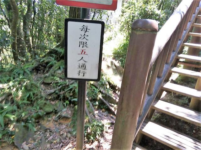 挑園復興的東眼山 (8)