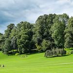 Avenham Park, Preston
