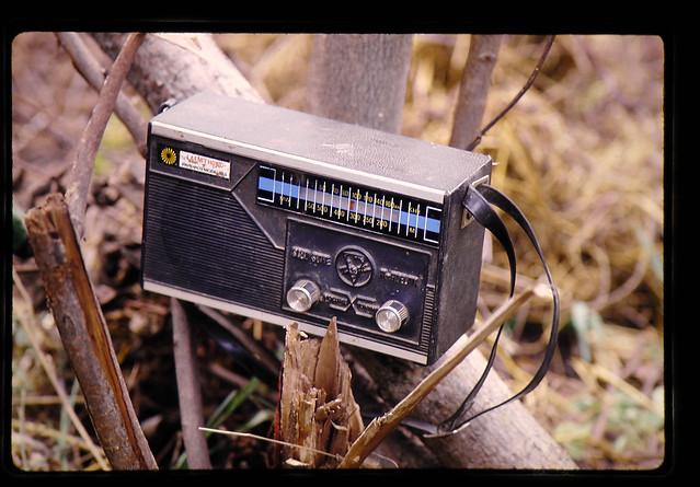 パクチョンのラジオ裏