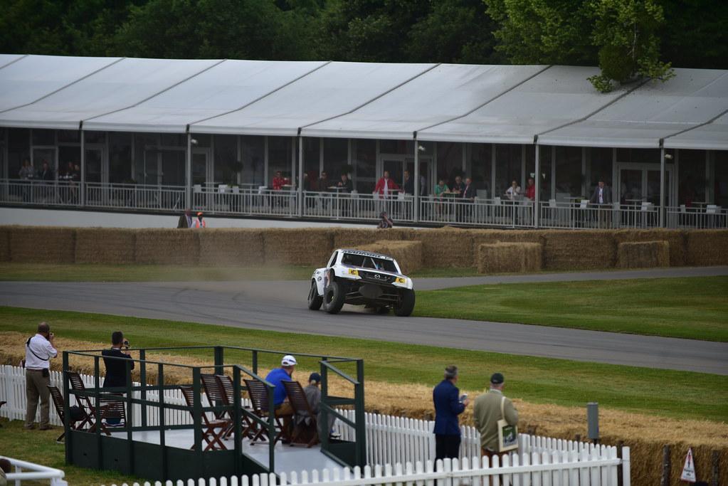 Goodwood Festival of Speed 2017 - Track (11)