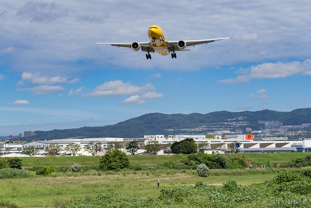Itami Airport 2017.8.3 (22) JA743A / C-3PO ANA JET (B777-200)