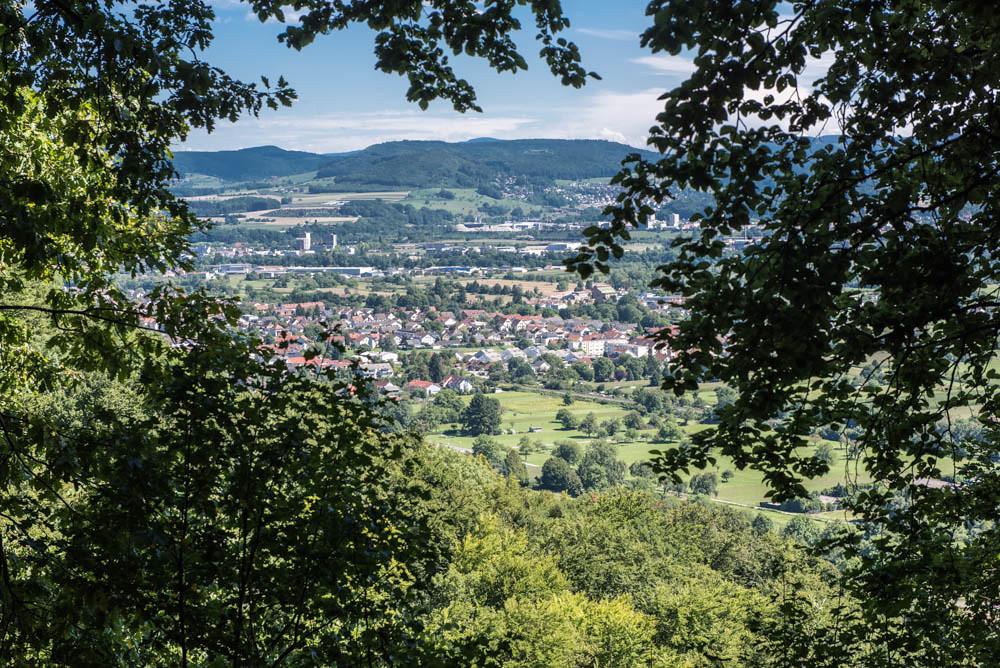 Buchswald_014