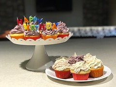 A birthday celebration filled with life by cupcakes and colorful candles