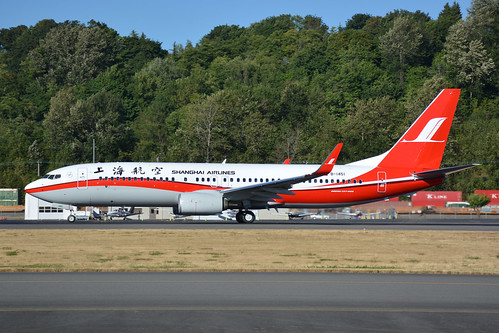 DSC_9101-SHANGHAI AIRLINES B737