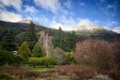 Cuatro estaciones - Peulla  (Patagonia - Chile)